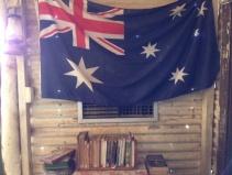 Molly's bookshelf