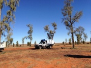 Acacia Peuce Reserve