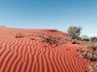 Rippling sands