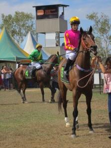 Jockeys in mounting ring