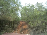 Old Telegraph Track
