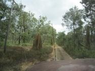 Old Telegraph Track, Cape York