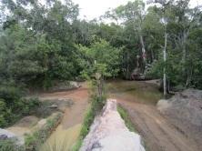 Gunshot Creek Old Telegraph Track
