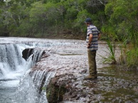 Waterfall, old telegraph Track