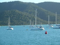 Whitsunday view