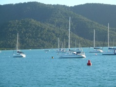 Whitsunday view